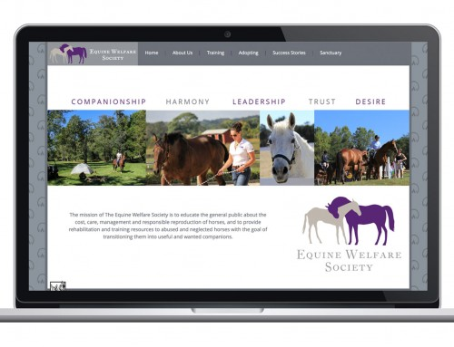 Equine Welfare Society